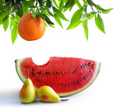 Fruits on white stock image