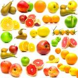 Fruits on white 3 Royalty Free Stock Image