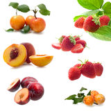 Fruits in white background Stock Photography