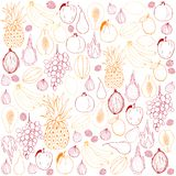 Fruits on white background. Vector background. Stock Photography
