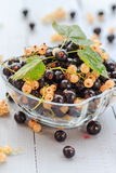 Fruits white black currants saucer wooden table Stock Photography