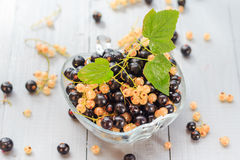 Fruits white black currants saucer wooden table Summer harvest Royalty Free Stock Image