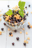 Fruits white black currants saucer wooden table Summer harvest Stock Image