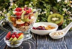 Fruitsaladeclose-up met bessen, yoghurt en granola in een glasboog Stock Afbeeldingen