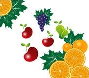 Fruitsbackground ilustração do vetor