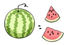 FruitsShutter2 Imagen de archivo libre de regalías