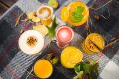 Fruittheeën met alcoholische cocktails royalty-vrije stock foto