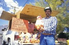 Fruitverkoper, Borrego-de Lentes, Californië stock afbeelding