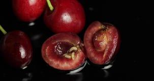 Fruitwormen in rotte kers, zwarte achtergrond Larve van kersenvliegen close-up stock video