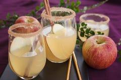 Fruity κοκτέιλ με το μήλο Στοκ Φωτογραφίες
