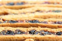 Fruity μπισκότα Στοκ Εικόνες