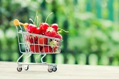 Fruity σύνολο κάρρων αγορών των κερασιών φραουλών Οι αγρότες συγκομίζουν στο υπόβαθρο τοπίων πρασινάδων, ρηχό βάθος Στοκ Εικόνες