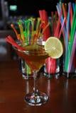Fruity alkoholiczny koktajl z słomą, cytryną i garnirunkiem, Colorf Obrazy Stock