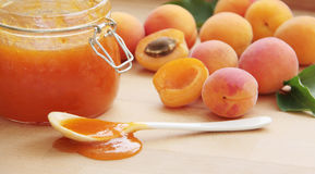 Fruity apricot jam in a glass jar. Fresh apricots on background. Close up view. Royalty Free Stock Photo