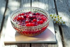 Fruity beery pudding Stock Image