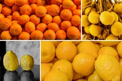 Fruity bright sunny collage pile of tangerines and lemon a pair of wild lemons with rough skin and juicy longan design royalty free stock photography
