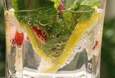 Fruity Bubbly Stock Photos