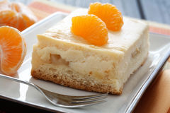 Fruity Cheese Cake Royalty Free Stock Photography