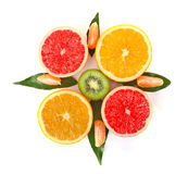 Fruity compass. On white background Stock Image
