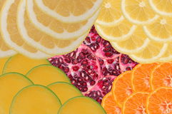 Fruity composition Stock Image