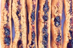 Fruity cookies. Bars use as backgroud Royalty Free Stock Image