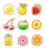 Fruity design elements Stock Image
