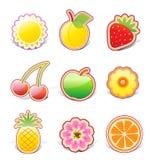 Fruity design elements. Vector illustration set of funky fruity design elements on stickers royalty free illustration