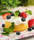 Fruity dessert Royalty Free Stock Photography