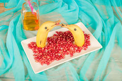 Fruity dolphins Stock Image
