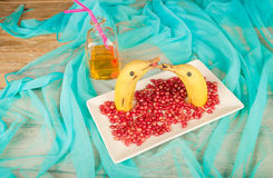 Fruity dolphins Royalty Free Stock Image