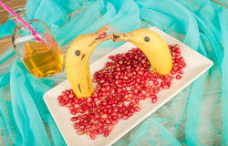 Fruity dolphins Royalty Free Stock Images