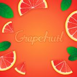 Fruity grapefruit background Royalty Free Stock Photo