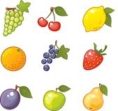 Fruity icons. Colorful icons with different fruits Stock Images