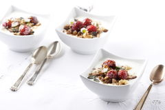 Fruity muesli Stock Image