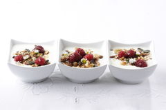 Fruity Muesli Royalty Free Stock Image
