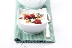 Fruity muesli Stock Images