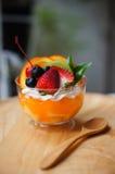 Fruity panny cotta Zdjęcie Royalty Free