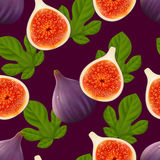 Fruity seamless pattern with figs fruit and leaves Royalty Free Stock Photos