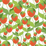 Fruity Strawberry texture. Vector seamless pattern of red berrie Stock Photos