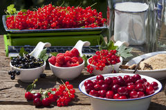 Fruity summer fruits freshly picked Stock Images