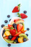 Fruity summer salad Stock Images