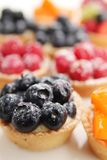 Fruity tarts Royalty Free Stock Photo