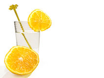 Fruity water Royalty Free Stock Image