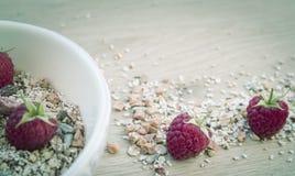 Frukost med mysli och hallon royaltyfri foto