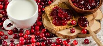 Frukost med tranbär Driftstopp kakor och mjölkar royaltyfri foto