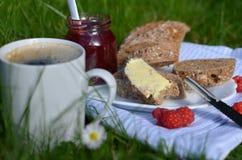 Frukost på gräset Arkivfoto