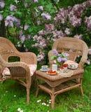 Frukost på trädgården Arkivfoton