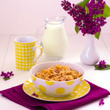 Frukostera inkludera mysli och mjölka royaltyfria foton