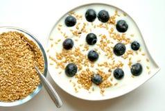 Frukostera med yoghurt-, blåbär- och linfrö royaltyfri fotografi