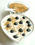 Frukostera med yoghurt-, blåbär- och linfrö arkivfoto